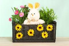 Flores de la primavera en la cesta Foto de archivo libre de regalías