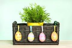 Flores de la primavera en la cesta Imagen de archivo