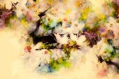 Flores de la primavera, fondo del flor de la primavera y fondo suavemente borroso de la acuarela Foto de archivo