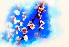 Flores de la primavera, fondo del flor de la primavera y fondo suavemente borroso de la acuarela Imagen de archivo