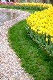 Flores de la primavera y cama de flor coloridas en los parques y los jardines a lo largo del Bosforus en Turquía fotos de archivo