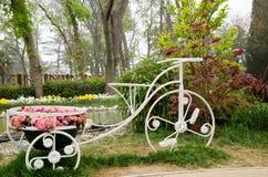 Flores de la primavera y cama de flor coloridas en los parques y los jardines a lo largo del Bosforus en Turquía foto de archivo libre de regalías