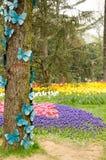 Flores de la primavera y cama de flor coloridas en los parques y los jardines a lo largo del Bosforus en Turquía fotos de archivo libres de regalías