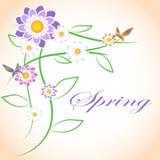 Flores de la primavera y pájaros del colibri Fotografía de archivo
