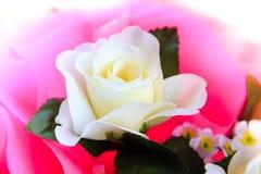 Flores de la rosa del blanco hechas de tela Imágenes de archivo libres de regalías