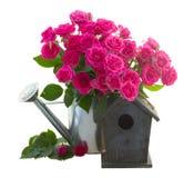 Flores de la rosa del rosa con la pajarera Imágenes de archivo libres de regalías