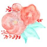 Flores de la tarjeta de felicitación de la acuarela del vector Fotos de archivo