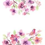 Flores de la tarjeta de felicitación de la acuarela handmade Fondo de la enhorabuena Tarjeta de las flores Fotografía de archivo