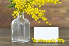 Flores de la tarjeta y de la mimosa de pascua foto de archivo libre de regalías