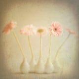 Flores de la vendimia Foto de archivo libre de regalías