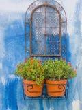 Flores de la ventana Fotos de archivo