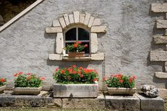 Flores de la ventana Fotos de archivo libres de regalías