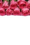 Flores de las rosas en la madre o el día de tarjeta del día de San Valentín aislado con los copys Imagenes de archivo