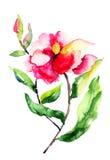 Flores de las rosas rojas Fotografía de archivo