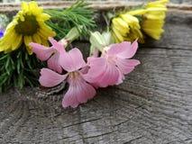 Flores de linho na superfície de madeira fotos de stock