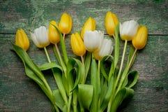 Flores de los tulipanes en de madera Imagen de archivo libre de regalías