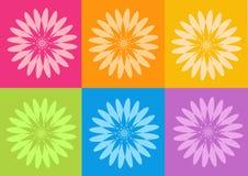 Flores de los yantras de la yoga Imágenes de archivo libres de regalías
