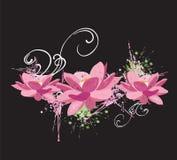 Flores de loto ilustración del vector