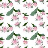 Flores de loto inconsútiles del modelo del vector libre illustration