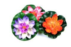 Flores de loto plásticas Imágenes de archivo libres de regalías