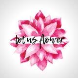Flores de loto rosadas de la acuarela aisladas Foto de archivo libre de regalías