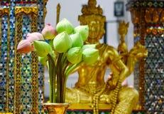 Flores de Lotus no templo budista Fotos de Stock Royalty Free