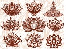 Flores de Lotus ornamentales Fotografía de archivo libre de regalías