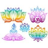 Flores de Lotus ornamentales del color Foto de archivo