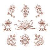Flores de Mendi Imagem de Stock Royalty Free