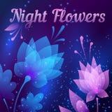 Flores de noite futuristas bonitas Cartão abstrato Vetor Imagens de Stock Royalty Free