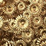 Flores de oro de la belleza scatering en el ejemplo de la pared 3D Foto de archivo libre de regalías