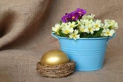Flores de oro del huevo y de la primavera de Pascua Imagenes de archivo