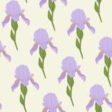 Flores de Pale Iris em um fundo verde-claro Sem emenda floral Fotografia de Stock Royalty Free