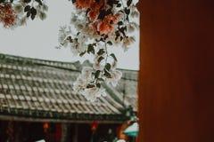 Flores de papel coloridas e tão românticas fotografia de stock royalty free
