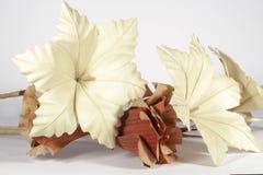 Flores de papel decorativas, en el fondo blanco Fotos de archivo