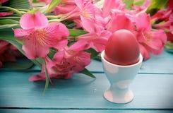 Flores de Pascua y huevera Fotos de archivo