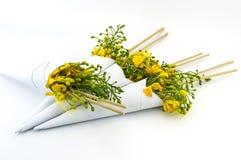Flores de pavão Fotografia de Stock