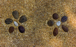 Flores de pedra Foto de Stock Royalty Free