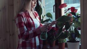Flores de riego de la mujer con un arma de espray almacen de metraje de vídeo