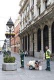 Flores de riego del servicio del verdor de la ciudad en cesta en polos ligeros imagenes de archivo