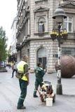 Flores de riego del servicio del verdor de la ciudad en cesta en polos ligeros fotografía de archivo