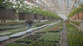 Flores de riego del trabajador adentro metrajes
