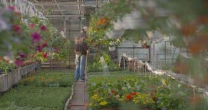 Flores de riego del trabajador en 4K almacen de video
