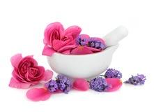 Flores de Rosa e de alfazema Fotografia de Stock Royalty Free