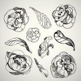 Flores de Rose Fotos de archivo libres de regalías