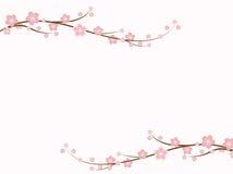 Flores de Sakura ilustração stock