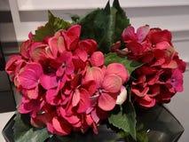 Flores de seda Imagen de archivo libre de regalías
