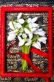 Flores de Snowdrop en un marco rojo Imágenes de archivo libres de regalías