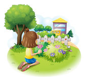 Flores de uma colheita da menina Imagem de Stock