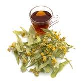 Flores de un tilo y de una taza transparente de té de la cal, aún vida Imagen de archivo